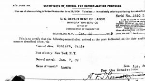 January 1919 Certificate of Arrival